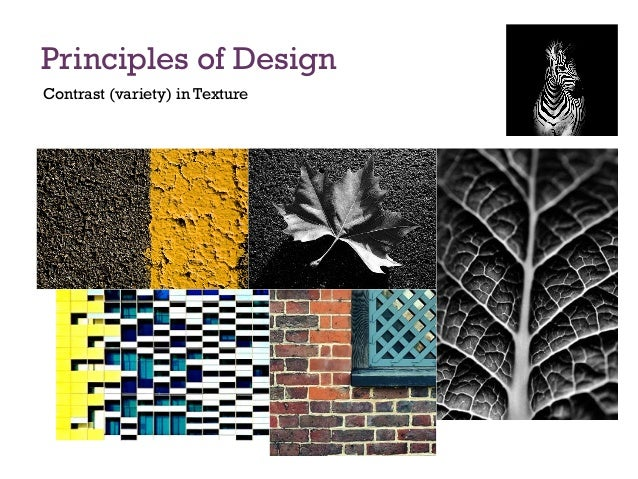 Variety In Principles Of Design : Principles of design