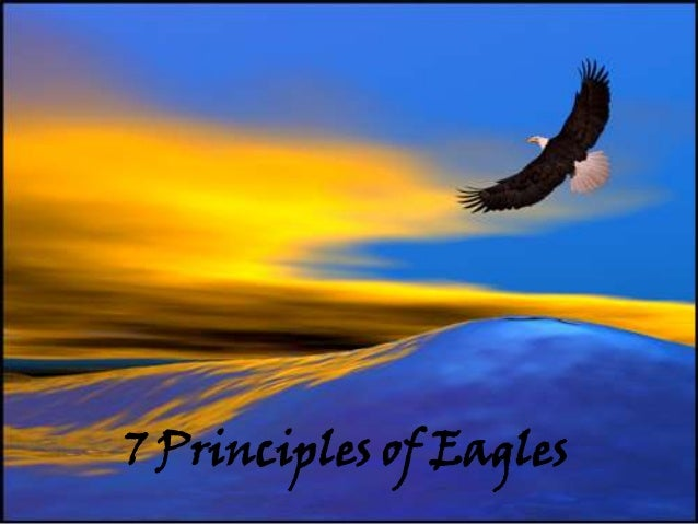 7 Principles of Eagles