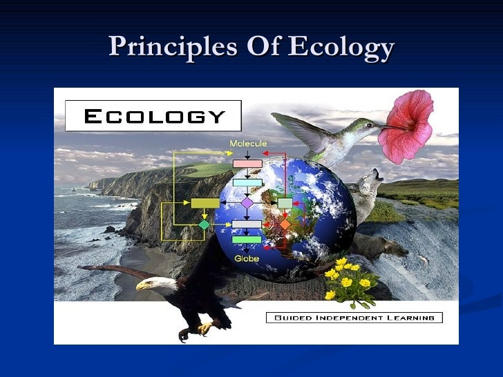Principles Of Ecology2007