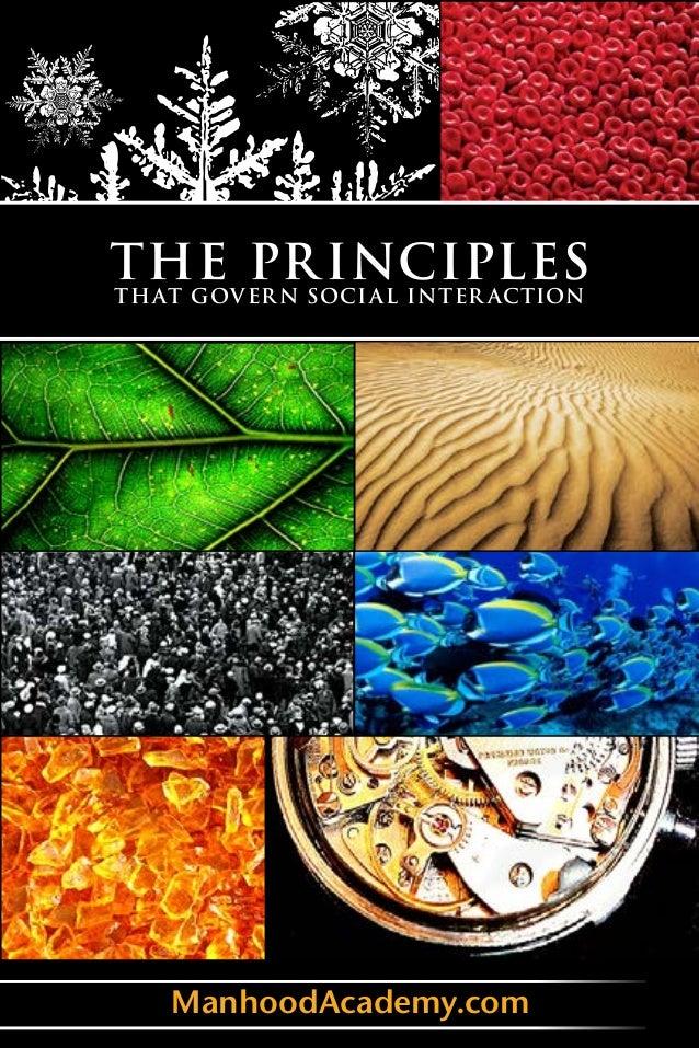Principles that govern social interaction version 1_1_8