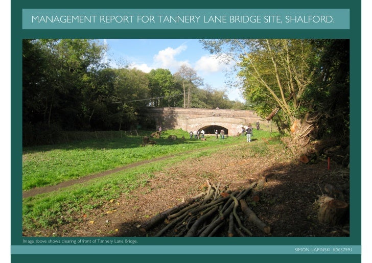 MANAGEMENT REPORT FOR TANNERY LANE BRIDGE SITE, SHALFORD.     Image above shows clearing of front of Tannery Lane Bridge. ...