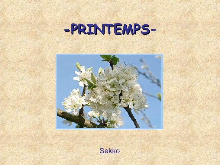 -PRINTEMPS - Sekko