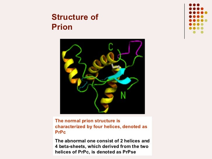 Structure of Prion The normal prion structure is characterized by four helices, denoted as PrPc The abnormal one consist o...