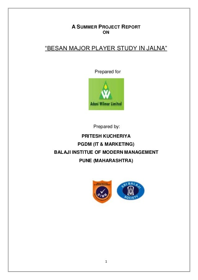 "A SUMMER PROJECT REPORT                   ON""BESAN MAJOR PLAYER STUDY IN JALNA""                Prepared for               ..."