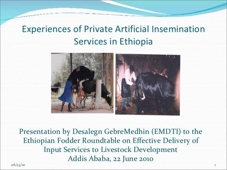 Experiences of Private Artificial Insemination Services in Ethiopia 06/23/10 Presentation by Desalegn GebreMedhin (EMDTI) ...