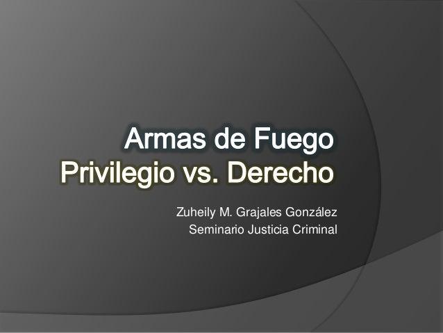Zuheily M. Grajales GonzálezSeminario Justicia Criminal