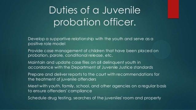 Probation Officer Career