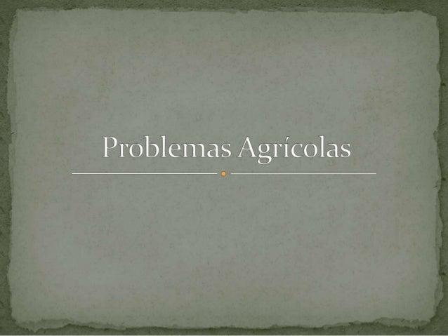 Problemas agrcolas
