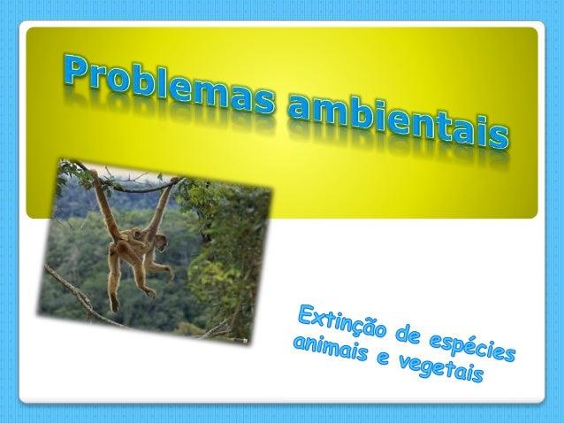  Mamíferos ameaçados   Aves ameaçadas   Repteis ameaçados   Artrópodes ameaçados   Plantas ameaçadas   Imagens   Co...