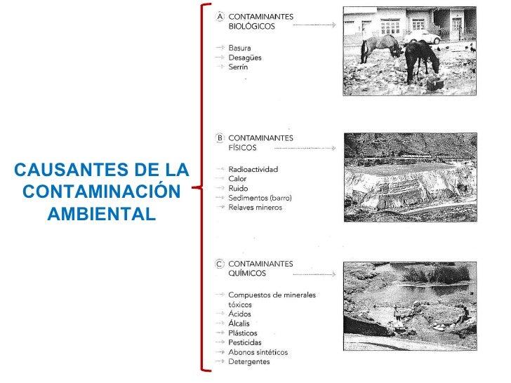 CAUSANTES DE LA CONTAMINACIÓN AMBIENTAL