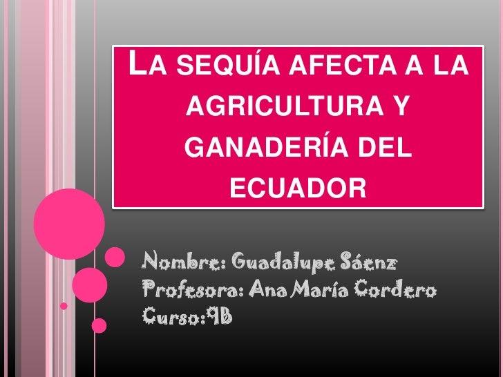 Problemas en agricultura y ganadería del ecuador