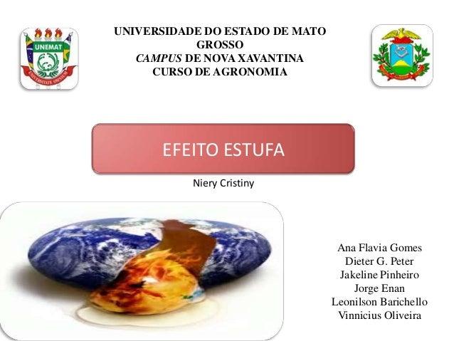 UNIVERSIDADE DO ESTADO DE MATOGROSSOCAMPUS DE NOVA XAVANTINACURSO DE AGRONOMIAEFEITO ESTUFAAna Flavia GomesDieter G. Peter...