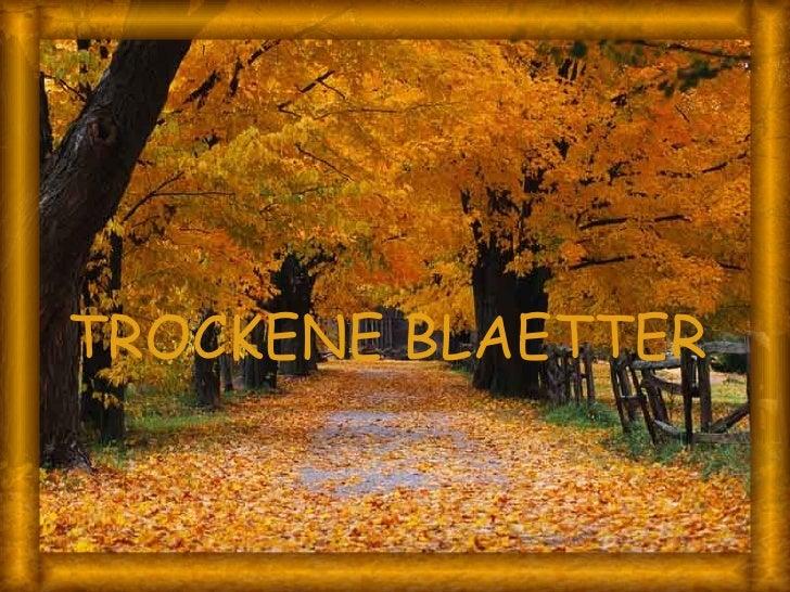 TROCKENE BLAETTER