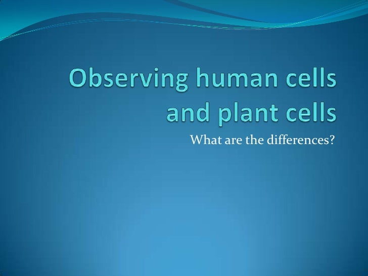 Observing human cellsand plant cells<br />What are the differences?<br />
