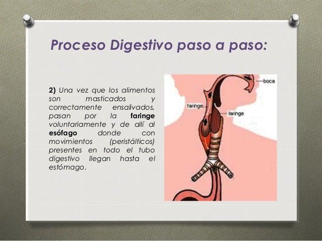 buy viagra soft online pharmacy