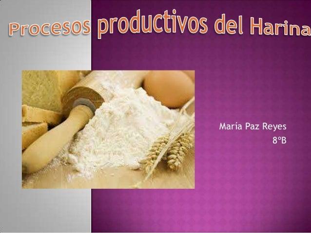 María Paz Reyes 8ºB