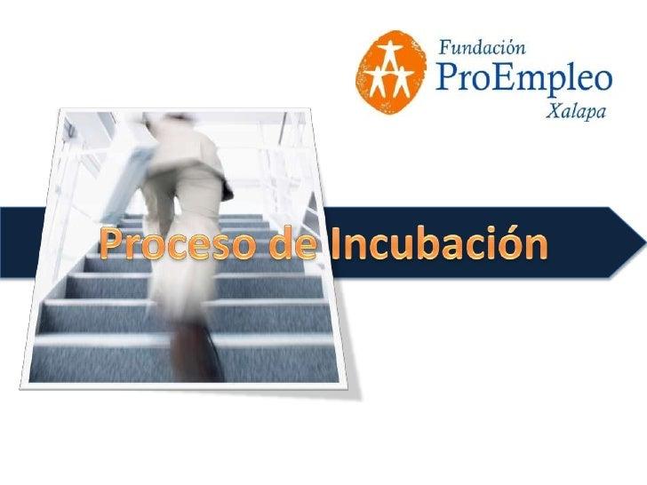 Proceso Incubación 2010