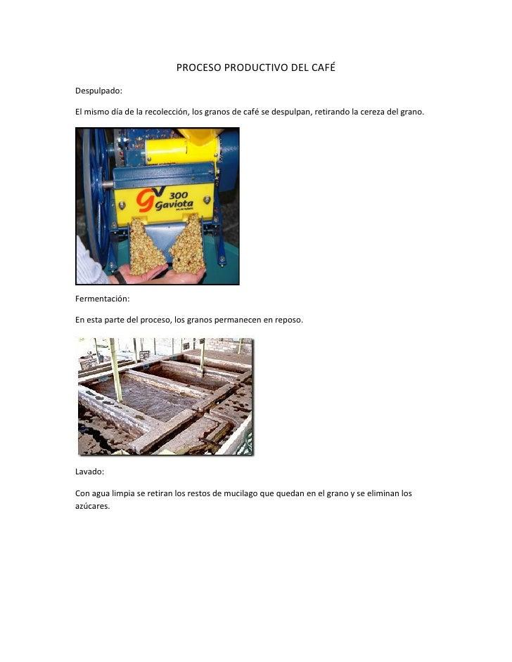 PROCESO PRODUCTIVO DEL CAFÉDespulpado:El mismo día de la recolección, los granos de café se despulpan, retirando la cereza...