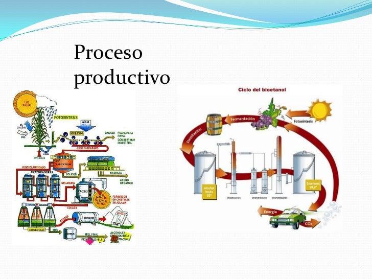Circuito Productivo Del Vino : Proceso productivos y artesanales