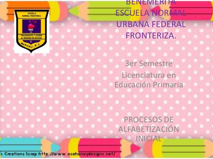 producto 7