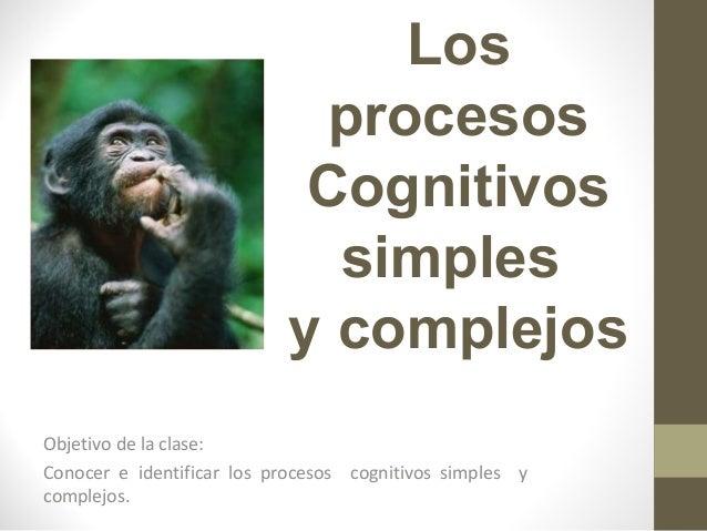 Los procesos Cognitivos simples y complejos Objetivo de la clase: Conocer e identificar los procesos cognitivos simples y ...