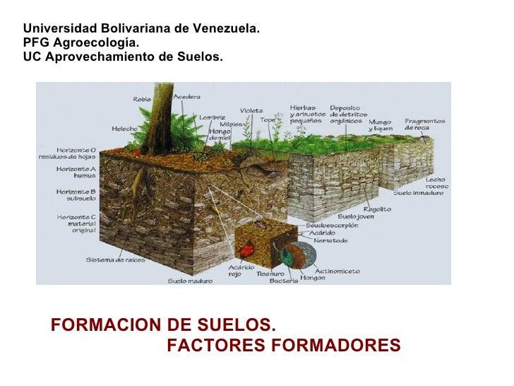 Procesos de formacion for Como esta constituido el suelo
