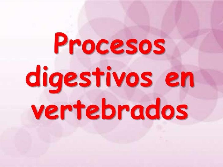 Procesos digestivos en vertebrados!!!!!!!
