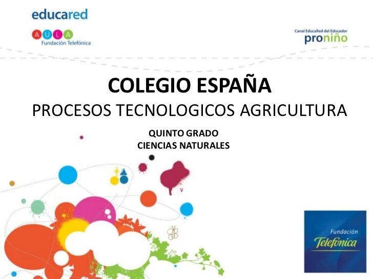 COLEGIO ESPAÑAPROCESOS TECNOLOGICOS AGRICULTURA              QUINTO GRADO           CIENCIAS NATURALES