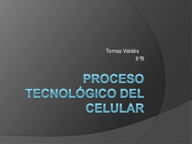 Tomas Valdés           8°B