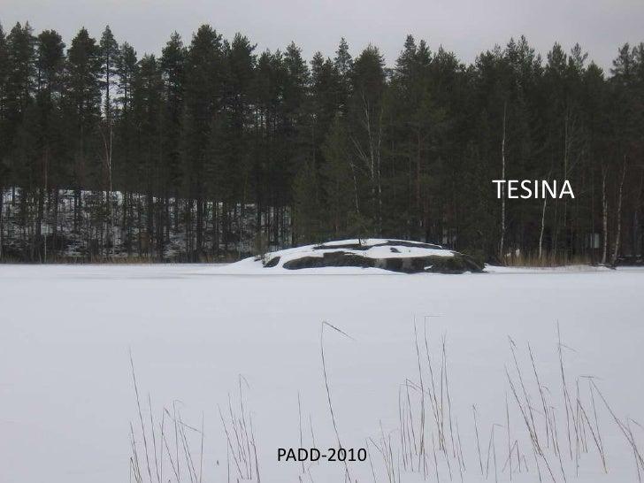 TESINA<br />PADD-2010<br />