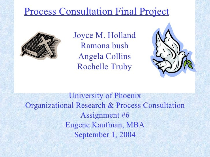 Process  Consultation  Final  Project