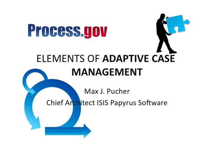 ELEMENTS  OF  ADAPTIVE  CASE         MANAGEMENT                            Max  J.  Pucher      Chief  A...
