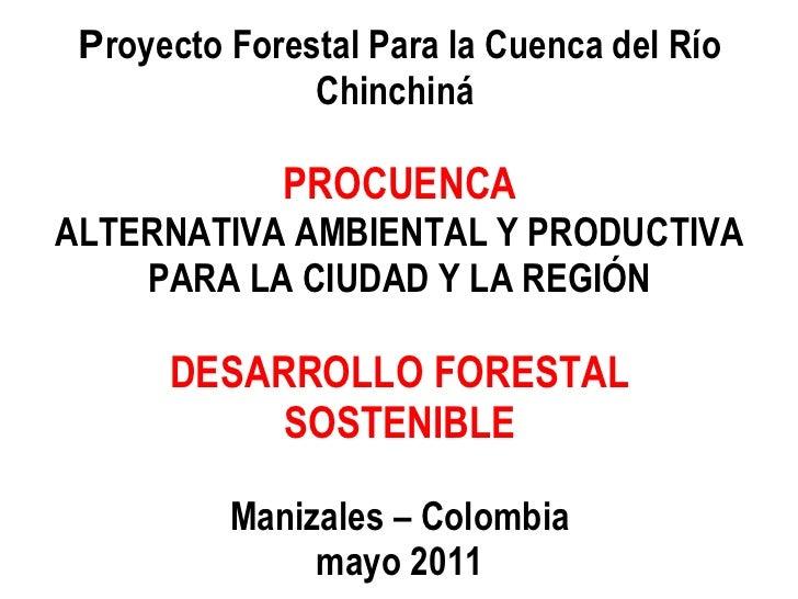 U.D.C.A Congreso de Ciencias y Tecnologías Ambientales 2010-2011: Proyecto Forestal para la Cuenca del Río Chinchiná - PROCUENCA, Alternativa Ambiental y Productiva para la Ciudad y la Región, Manizales - Colombia