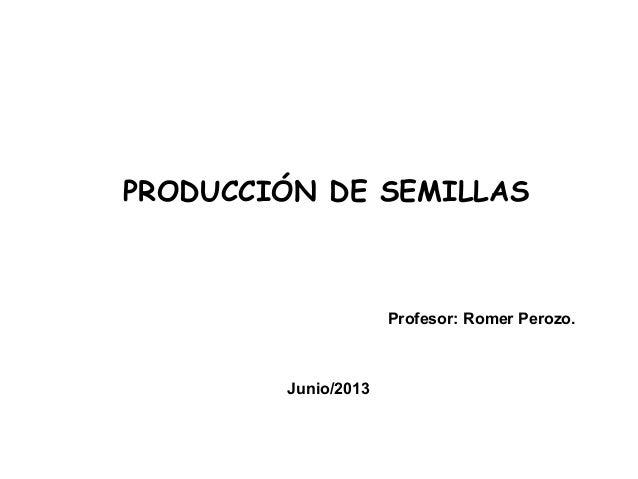 PRODUCCIÓN DE SEMILLAS Profesor: Romer Perozo. Junio/2013