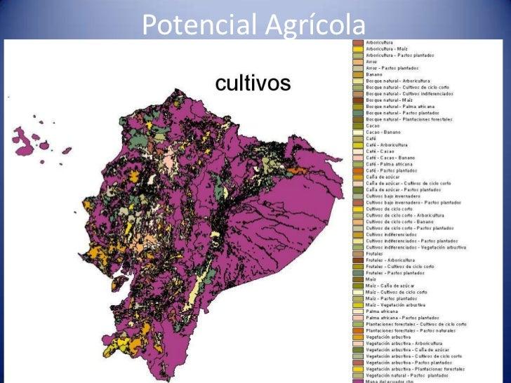 mapa productor agricolas ecuador