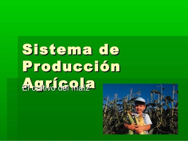 Producción agricola