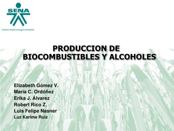 Centro biotecnología industrial                               PRODUCCION DE                     BIOCOMBUSTIBLES Y ALCOHOLE...
