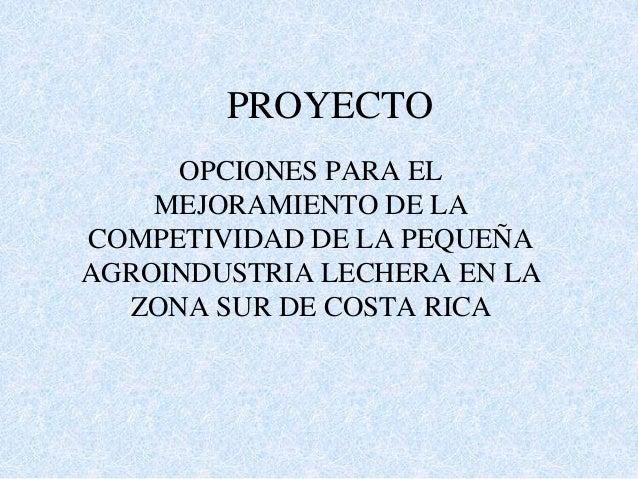 PROYECTO OPCIONES PARA EL MEJORAMIENTO DE LA COMPETIVIDAD DE LA PEQUEÑA AGROINDUSTRIA LECHERA EN LA ZONA SUR DE COSTA RICA