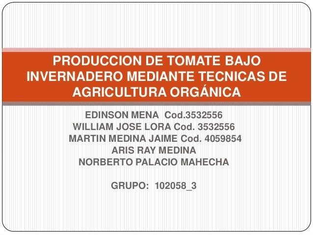 PRODUCCION DE TOMATE BAJOINVERNADERO MEDIANTE TECNICAS DE      AGRICULTURA ORGÁNICA        EDINSON MENA Cod.3532556      W...