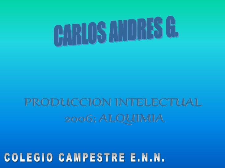 Produccion intelectual 2006