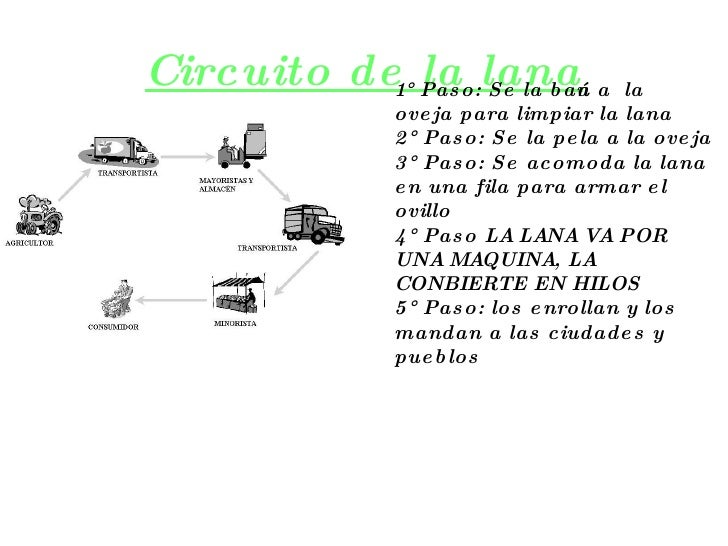 Circuito Productivo De La Lana : Circuito productivo la lana de