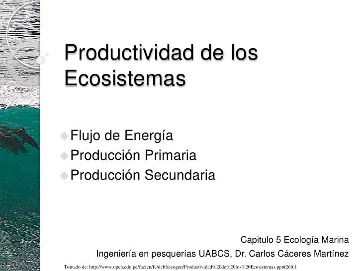 Productividad delosecosistemas