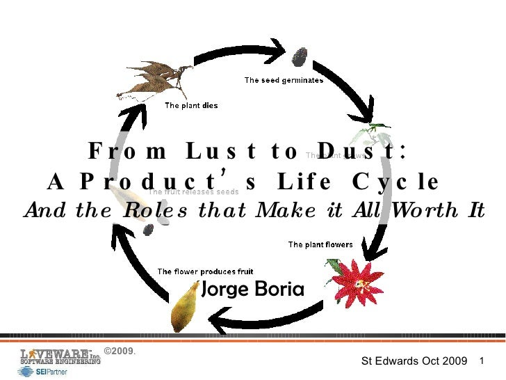 From Lust to Dust:  A Product's Life Cycle  And the Roles that Make it All Worth It Jorge Boria