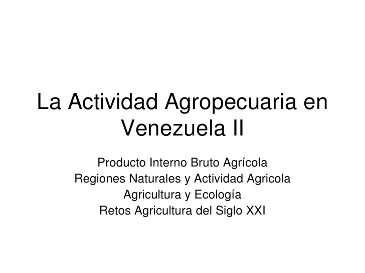 Producto interno bruto agricola
