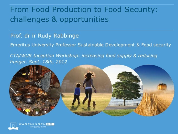 From Food Production to Food Security: