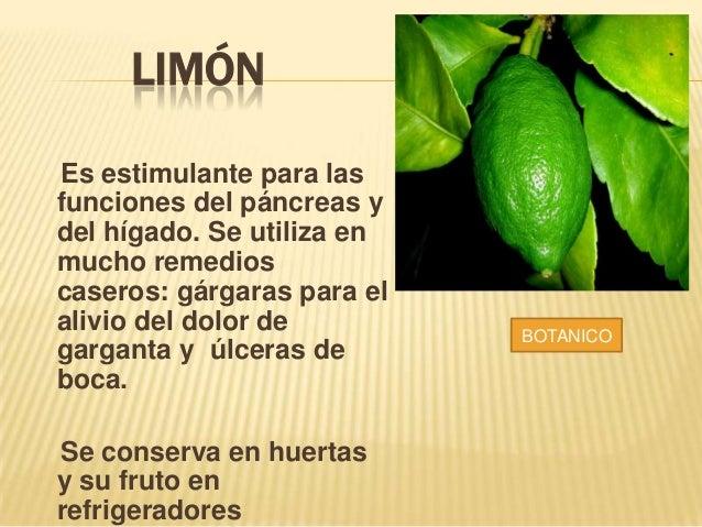 Profecion botanica - Sequedad de boca remedios naturales ...
