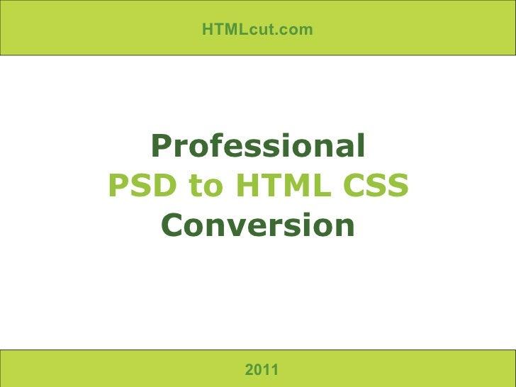 2011 Professional PSD to HTML CSS Conversion HTMLcut.com