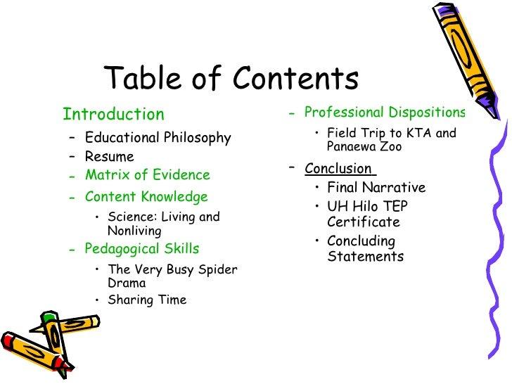 Professional portfolio examples for teachers professional teaching