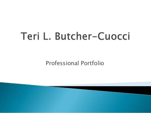 Professional portfolio 41113