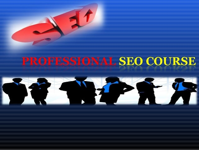 Professional SEO Course